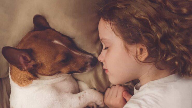 dormir con un perro