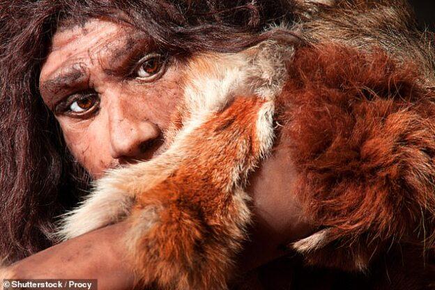 Humanos de edad de piedra carnivoros
